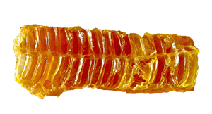 Houdbaarheid Honing
